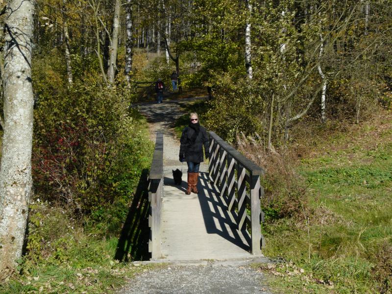 Die erste Ruhrbrücke nach dem Quellgebiet