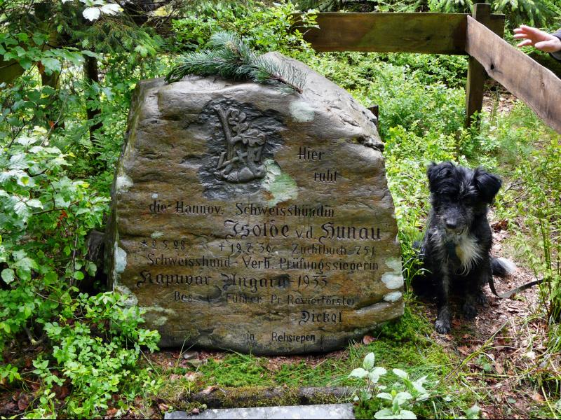 Hundegrab der Isolde von der Hunau